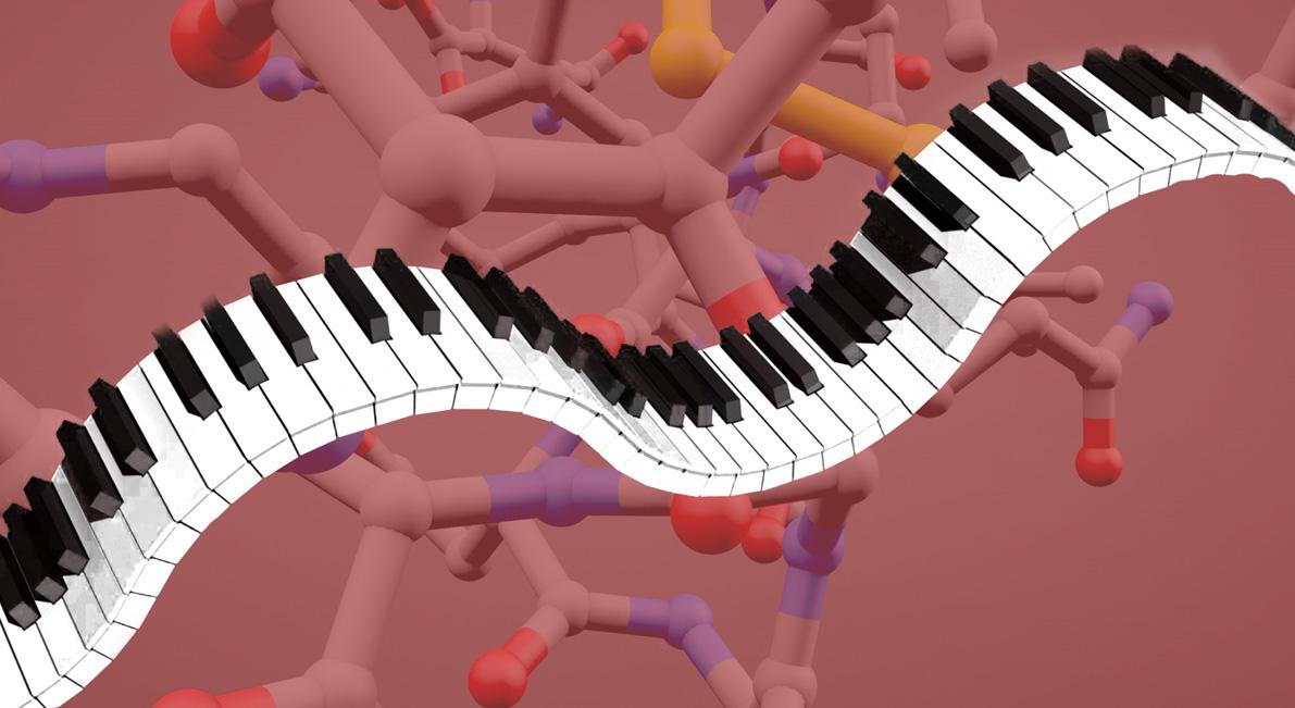 Música de polímeros para oídos moleculares