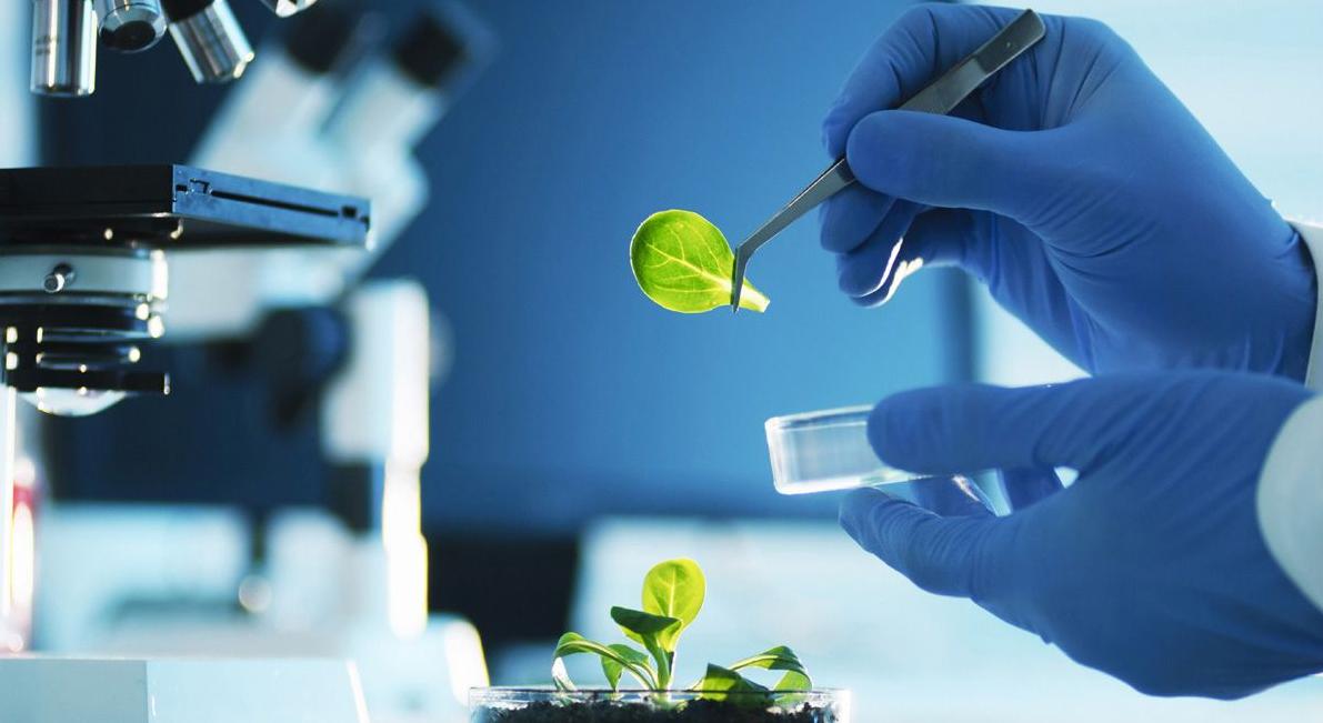SusChem-España colabora en el Foro de Agroalimentación, ASEBIO